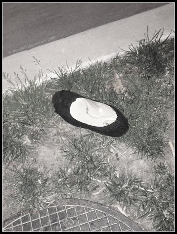 lone shoe.jpg